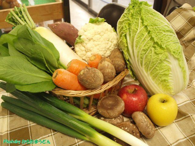 季節野菜セット